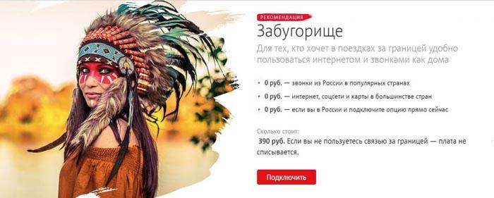 """реклама услуги """"Забугорище"""""""