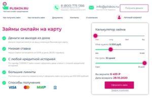 условия сервиса Плисков